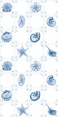Seashells By The Shore
