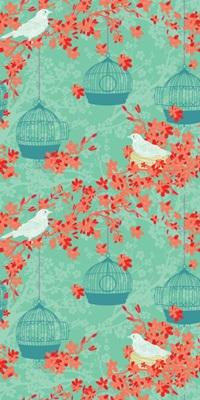Birdcages I