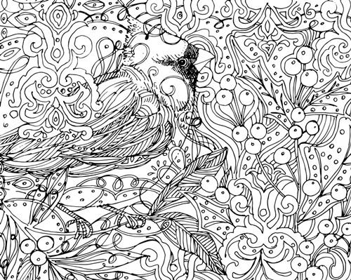 Cardinal | Coloring Canvas - Canvas On Demand®