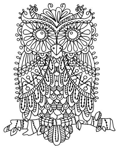 Color me owl | Coloring Canvas - Canvas On Demand®