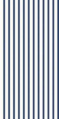 Striped Pattern in Blue and White