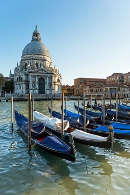 Gondolas in Front of The Salute, Venice, Italy, Europe