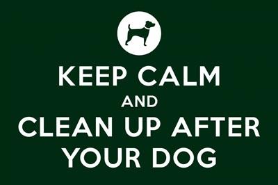 Keep Calm - Scoop - Green