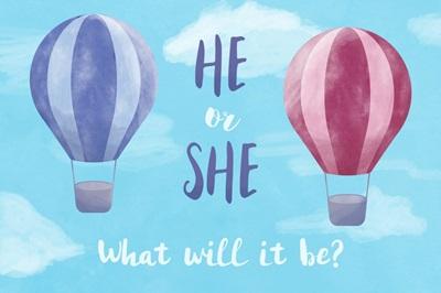 Gender Reveal - Hot Air Balloons