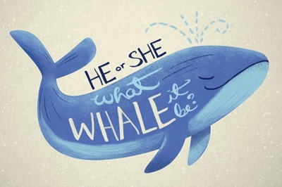 Gender Reveal - Whale