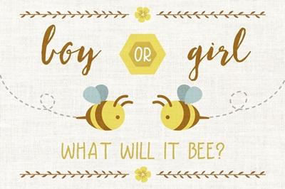 Gender Reveal - Bee
