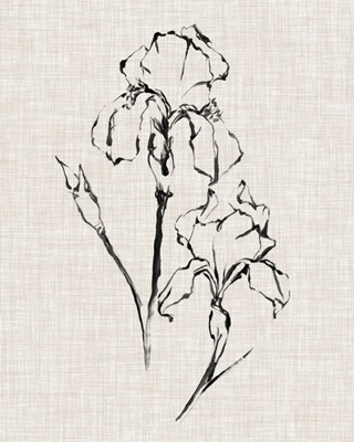 Floral Ink Study II