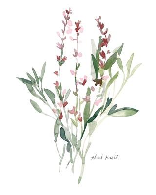 Herb Garden Sketches V