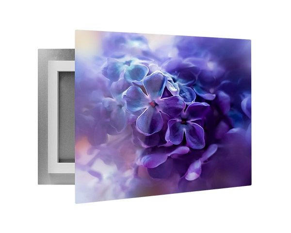 Custom printed photo on an aluminum metal print